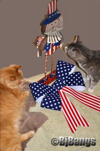 cats celebrate Memorial Day 2013