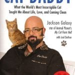 Jackson Galaxy's 'Cat Daddy' tells how he went from a life of addiction to one full of cat mojo.