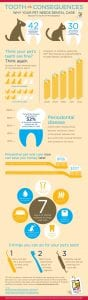February: National Pet Dental Health Month