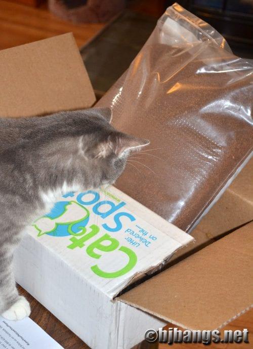 CatSpot - a new type of cat litter
