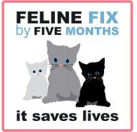 Early spay/neuter will stop explosive cat overpopulation