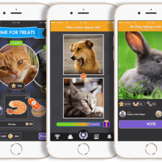 Pet Parade app offers fun photo contest